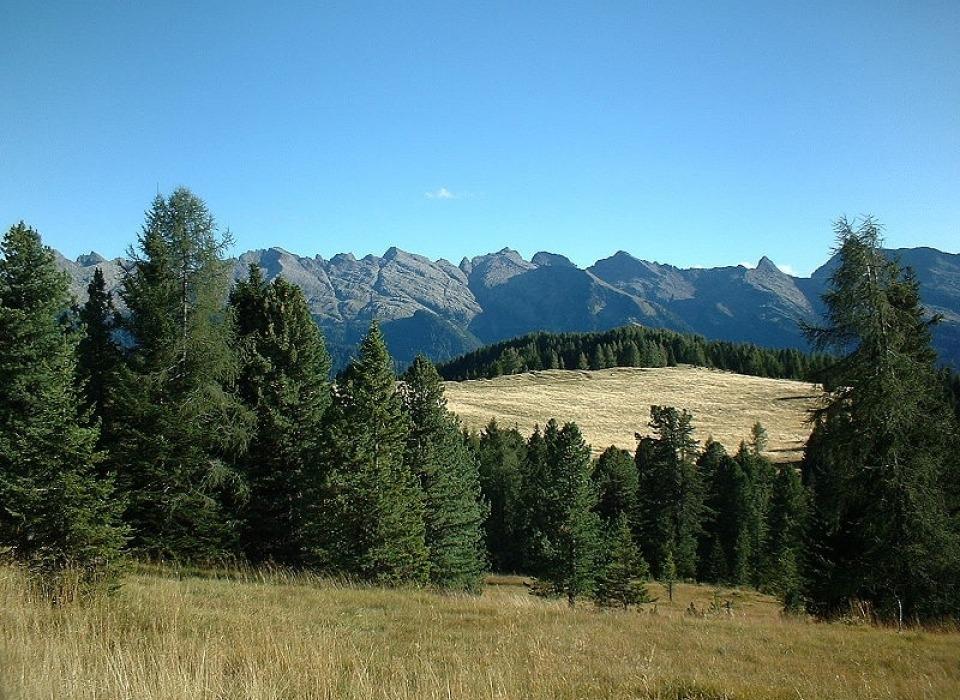 Долина Val di Fiemme